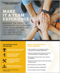 Download the Team Experience flyer
